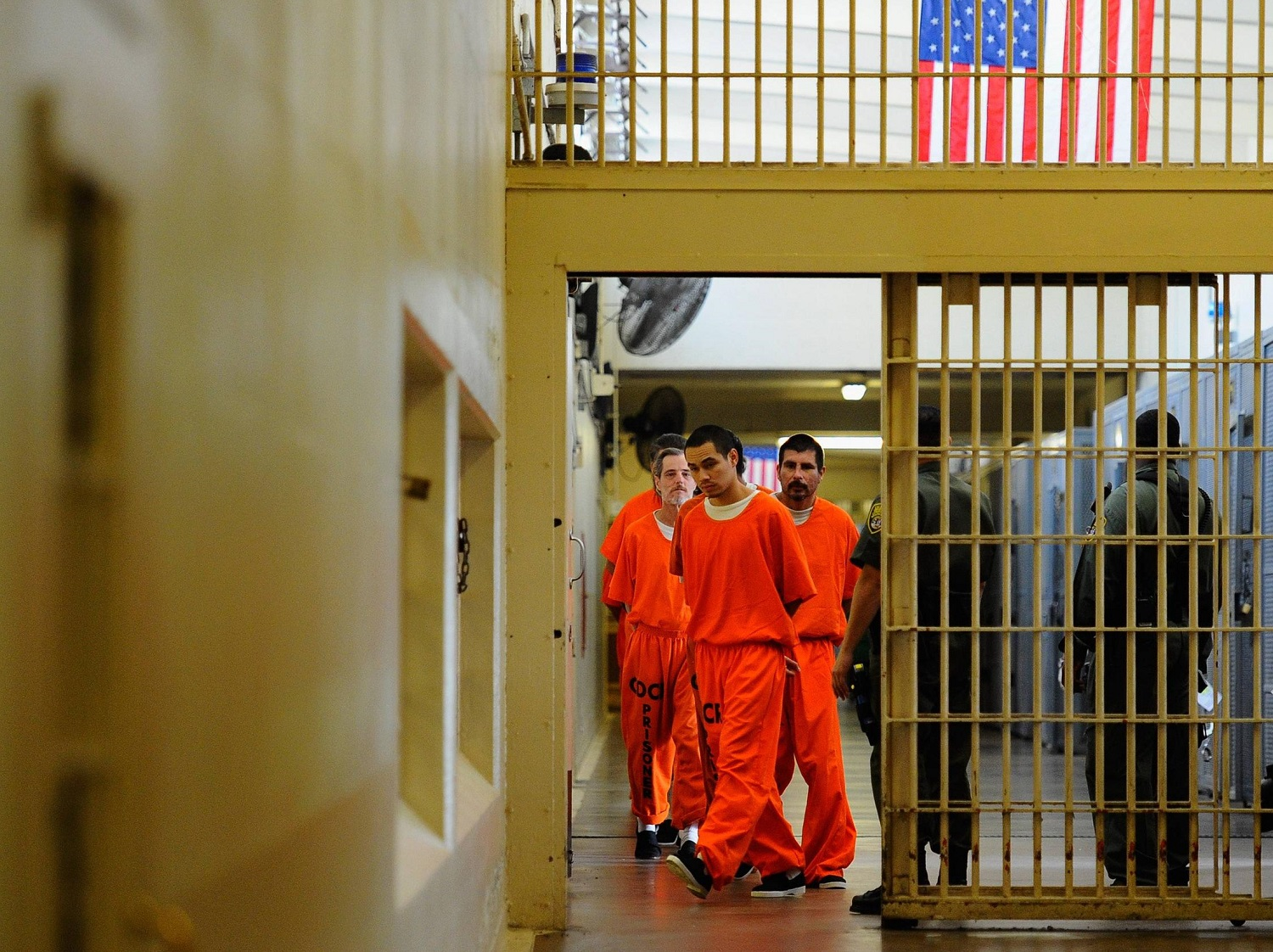 prison essays A prison can be defined as a facility that is set up under the authority of a state within these facilities, individuals who have been sentenced for criminal activity are forcibly denied a large number of freedoms and placed within the confines of the prison.