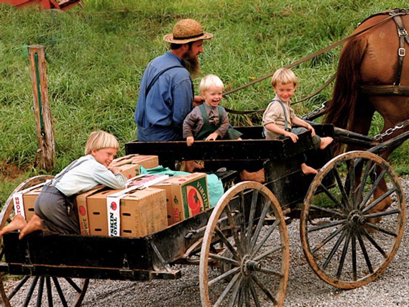амиши дети.jpg