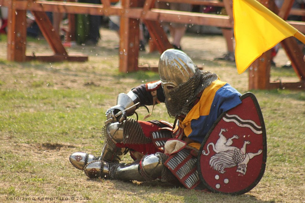 bnfest_2012___knight_tournament_ix_by_galloping_horse-d56pc7a.jpg