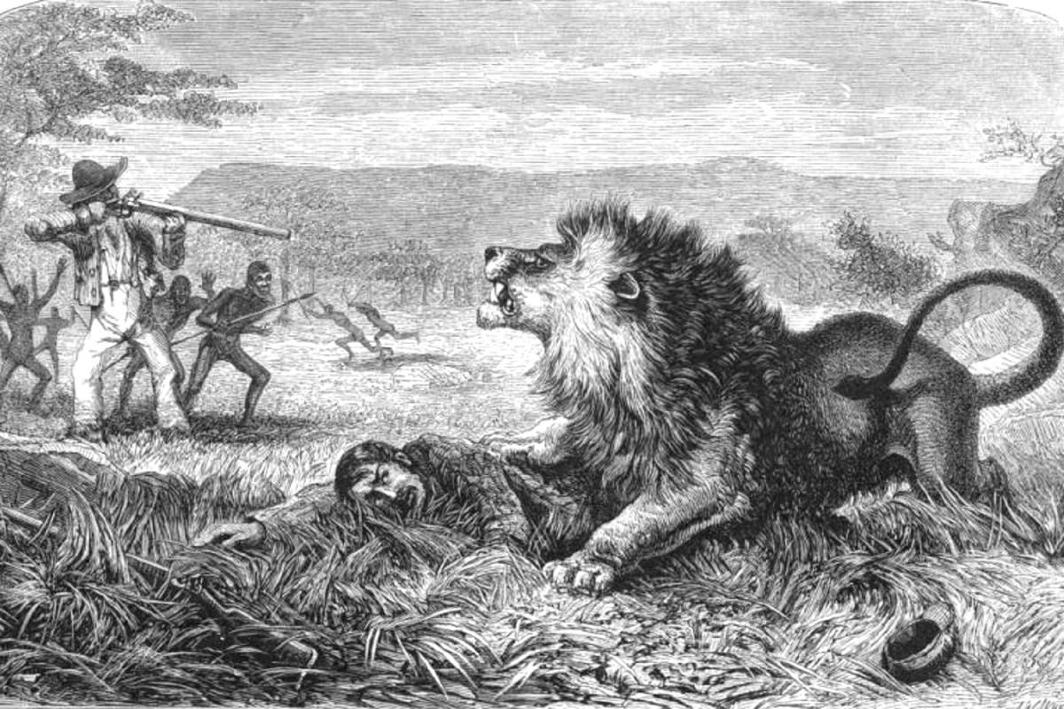 Борьба со львом.