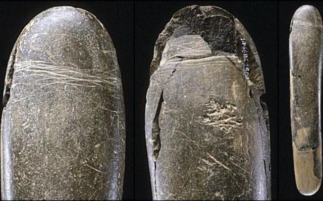Самый древний фаллоимитатор, найденный в Германии.