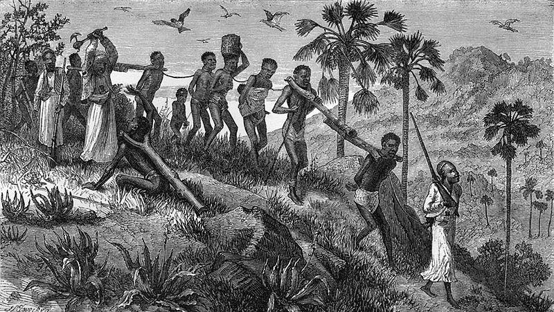 Зинджи Мозамбика в XIX веке.