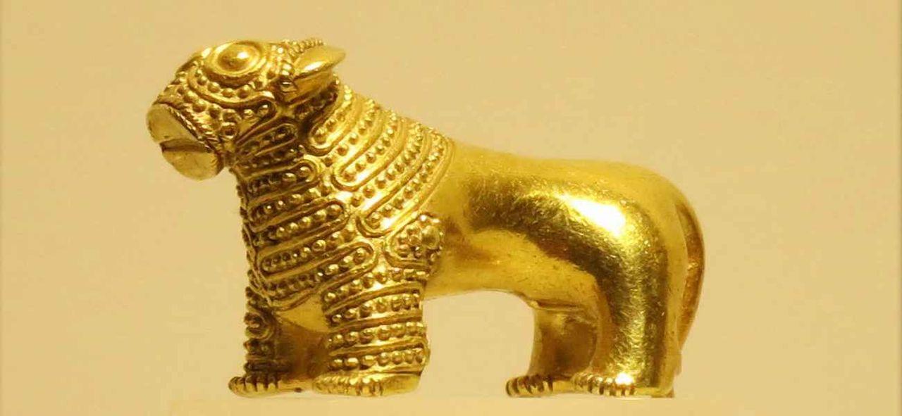 торт фото золото колхиды лобные