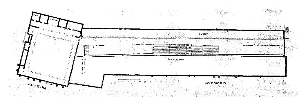 Схема палестры и гимнасия вПриене.