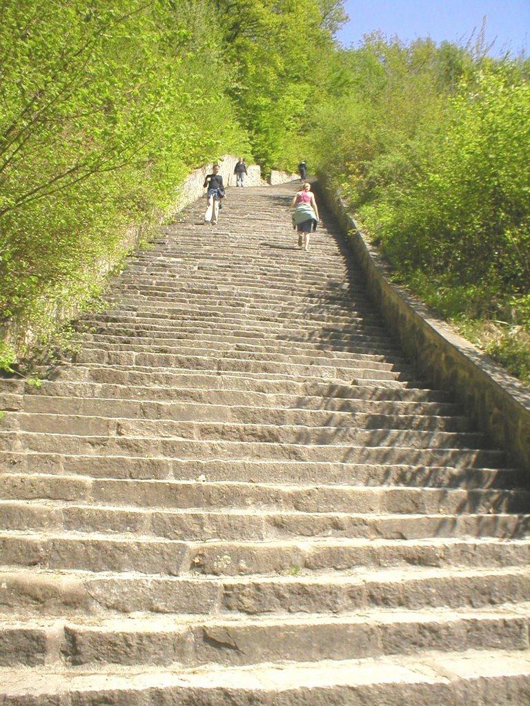 Лестница в наши дни.jpg