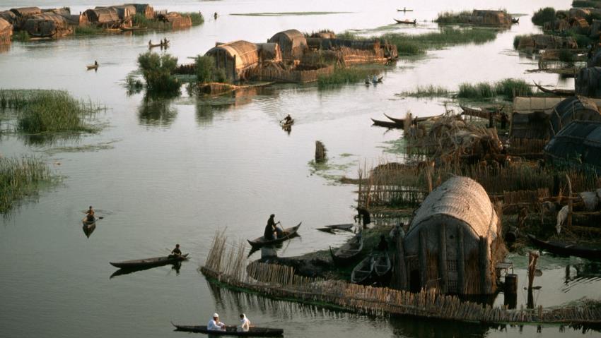 Иракские болота.