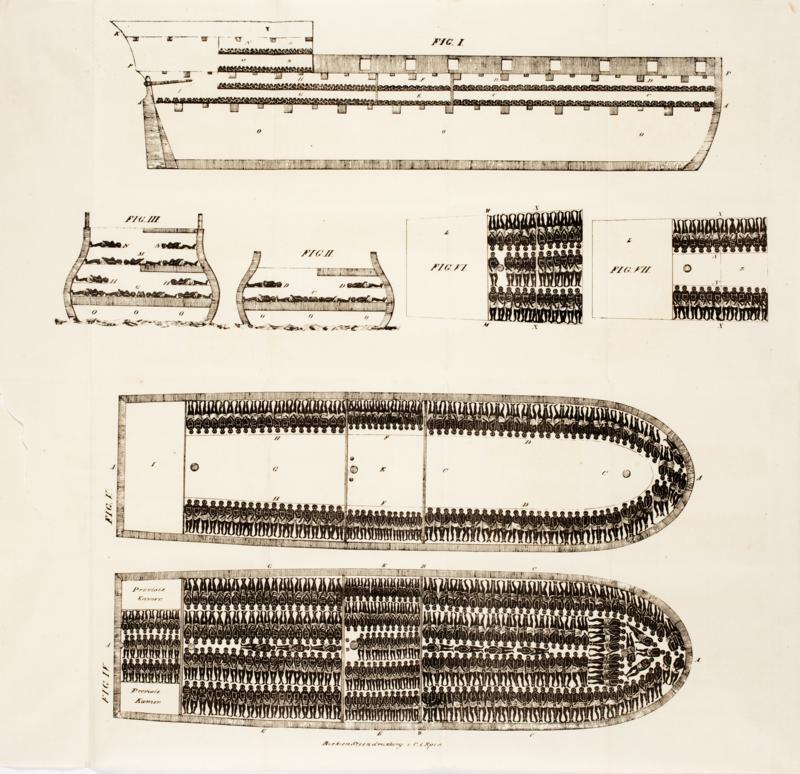 Схема невольничьего корабля с расположением рабов, 1822г. <br>