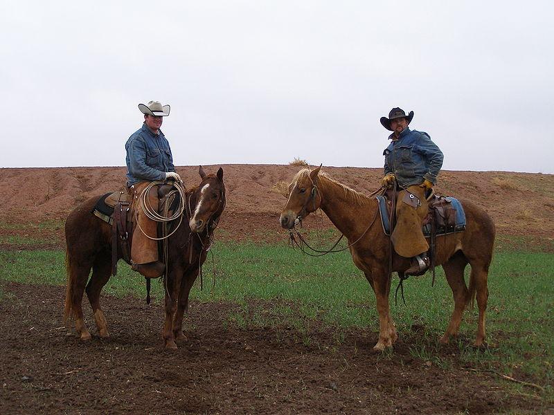 Современные техасские ковбои.jpg