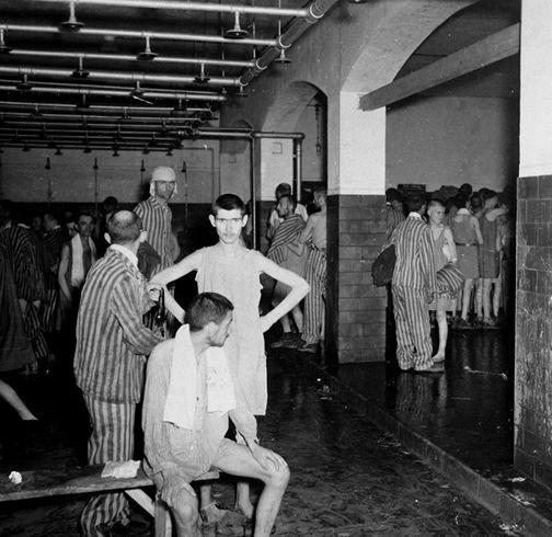 Dachaugascamera.jpg