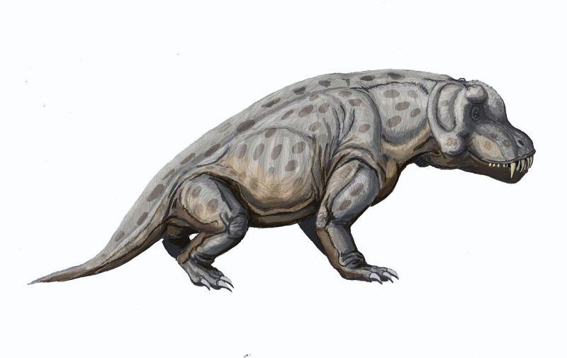 Антеозавр, считавшийся неповоротливым, оказался суперубийцей