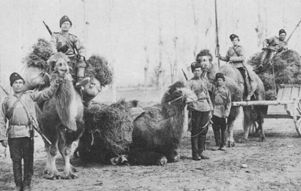 Казаки в Средней Азии вконце XIX века.