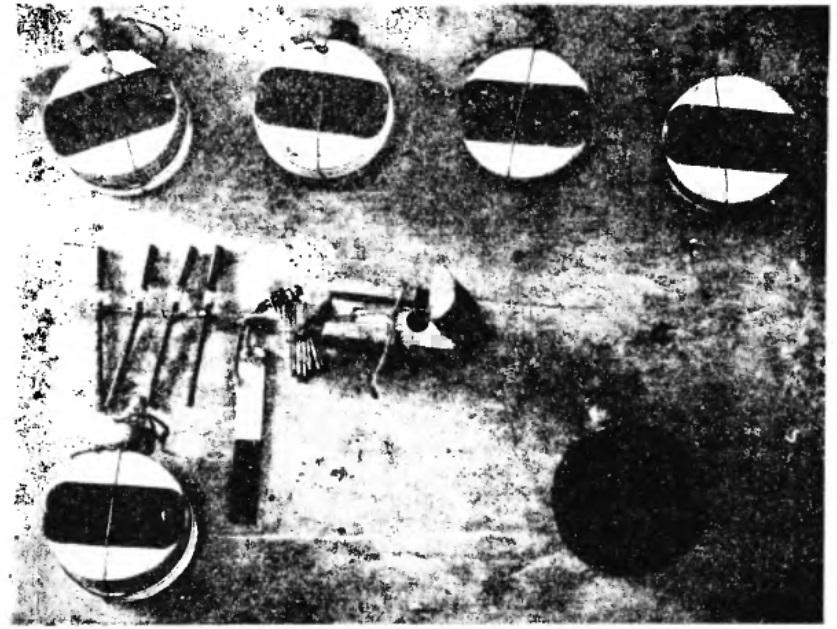 Бомбы, найденные позже у других белых террористов.